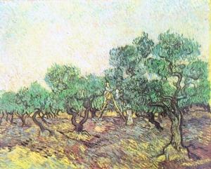 橄榄采摘_Olive Picking-文森特·梵高
