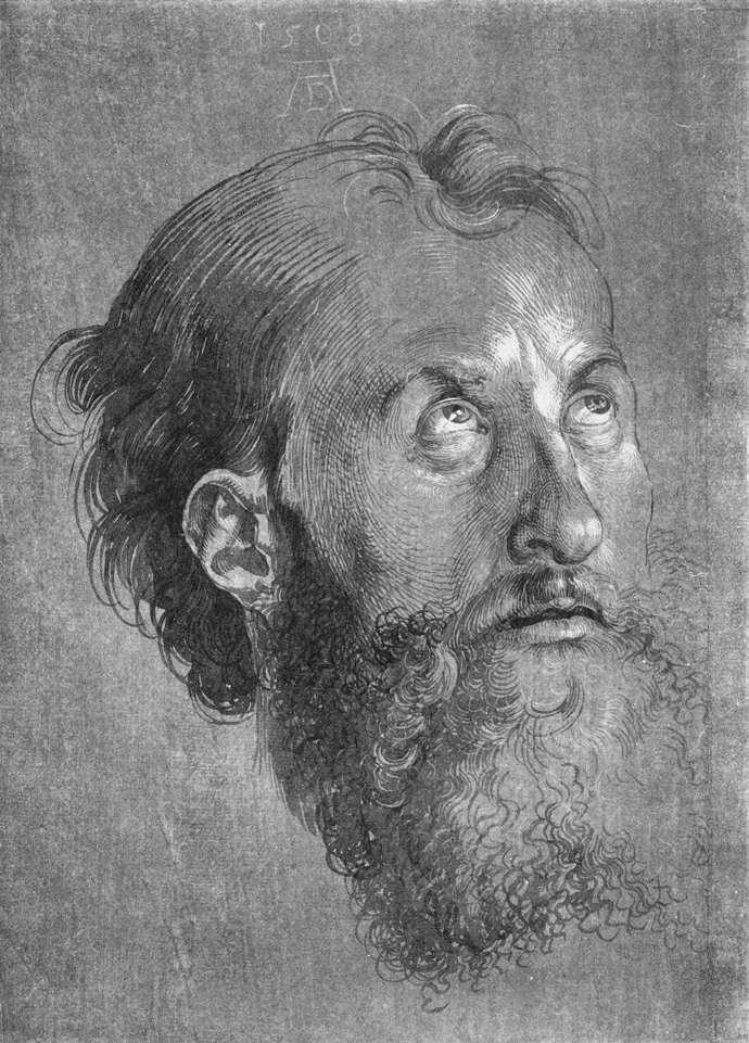 肖像素描画_向上看的使徒画像_Head of an Apostle Looking Upward-阿尔布雷希特·丢勒