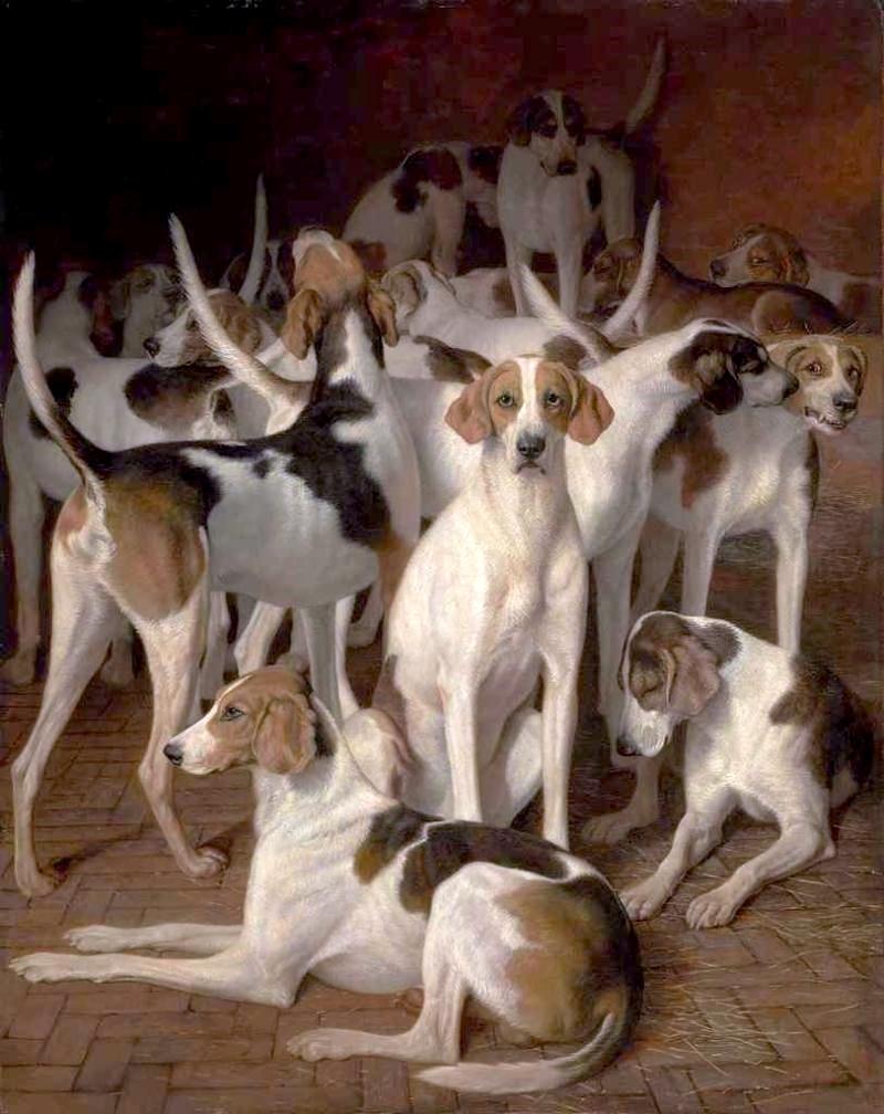 狗窝里的狗_Hounds in a Kennel-雅克·劳伦特·阿加斯