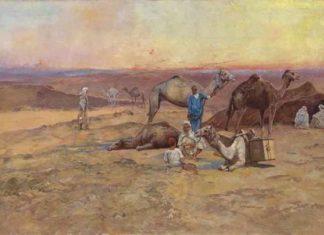 在沙漠中休息