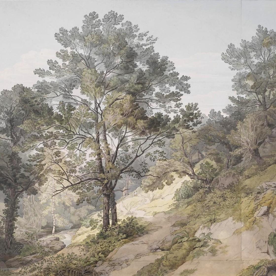 佳诺泰附近的景色,德文郡_View near Canonteign, Devon-约翰·怀特·阿伯特