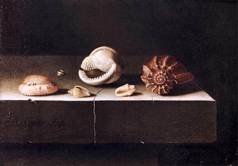 有两个大海螺和四个小海螺的静物_Still Life with Two Large and Four Smaller Shells-艾德里安·库特