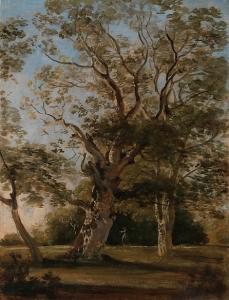 慕尼黑英国花园的山毛榉_Beech Trees in the English Garden, Munich-约翰·乔治·冯·迪利斯