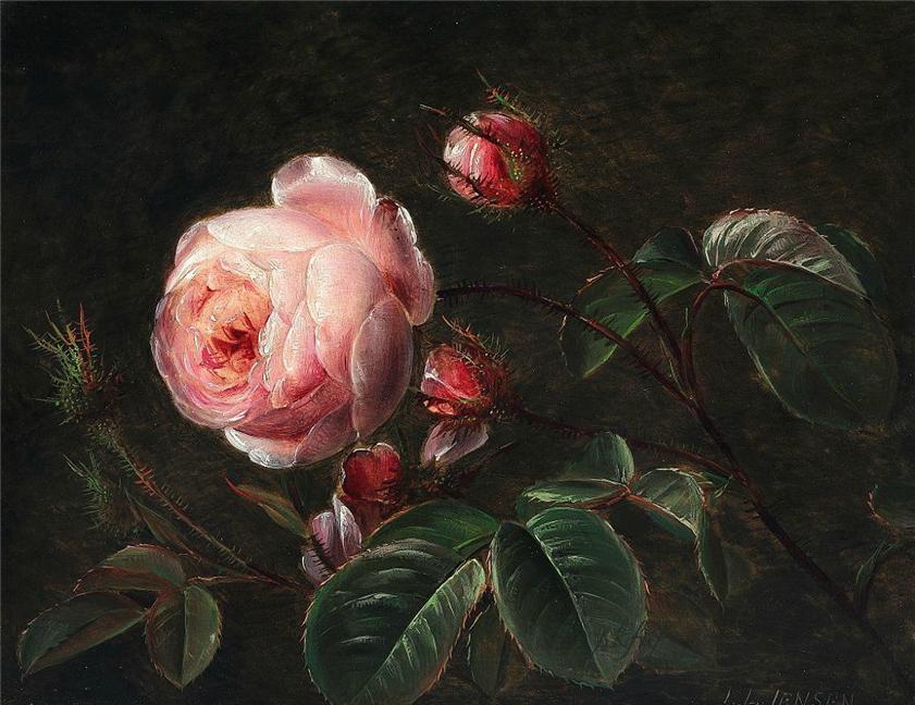 粉红玫瑰枝_Branches of pink roses-约翰·劳伦兹·詹森