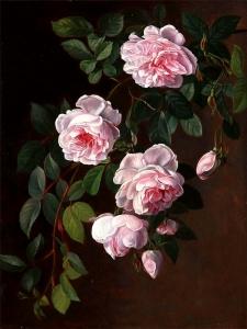 玫瑰_Roses-约翰·劳伦兹·詹森