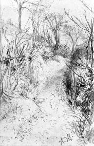 小径两旁是光秃秃的树篱_Path Lined with Bare Hedges-阿道夫·门采尔